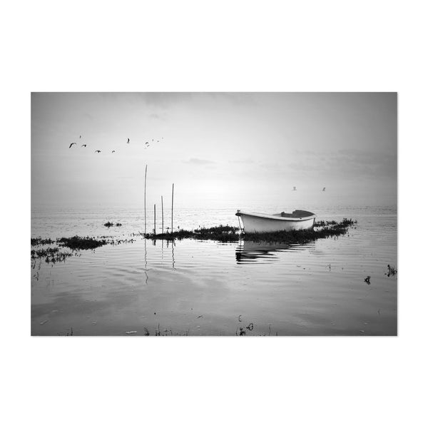 Portugal Boats Birds Photo Art Print