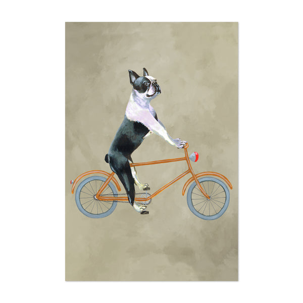 Boston Terrier Dog Bicycle Painting Art Print
