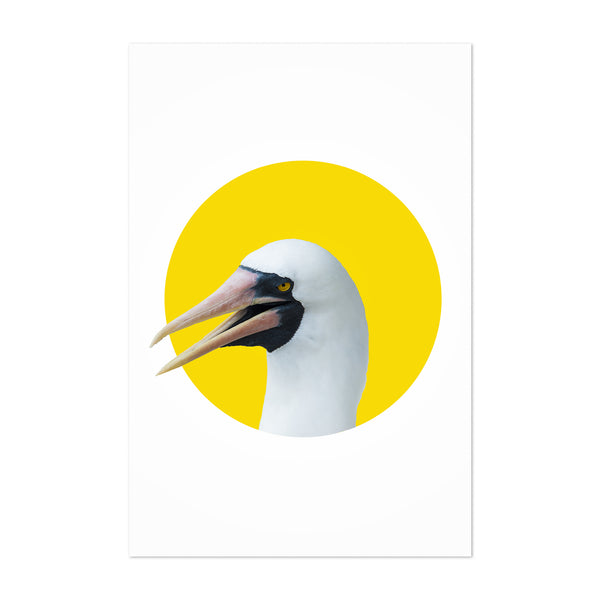 Yellow Nazca Booby Bird Minimal Animal Art Print