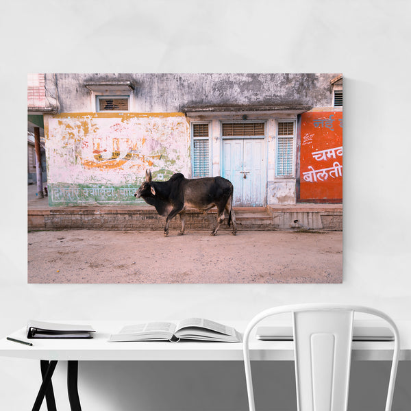 Bull Animal Village Street India Art Print
