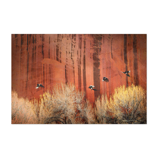 Capitol Reef National Park Utah Art Print