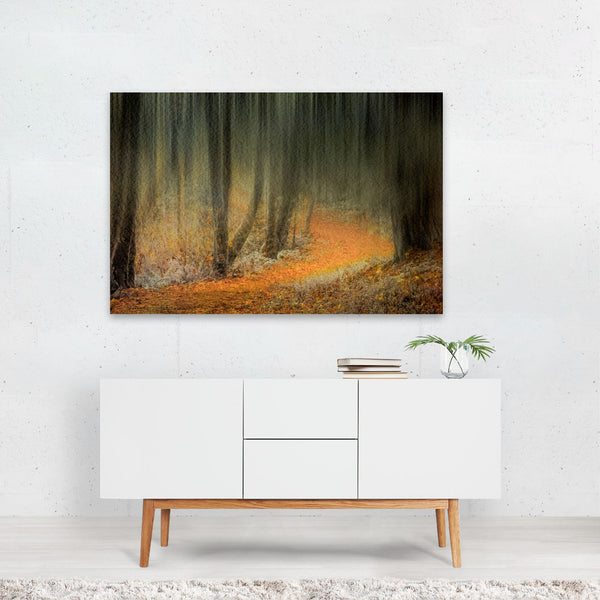 Oregon Fall Forest Nature Photo Art Print