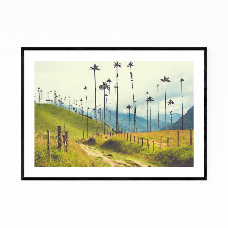 Salento Colombia Palms Photo Framed Art Print