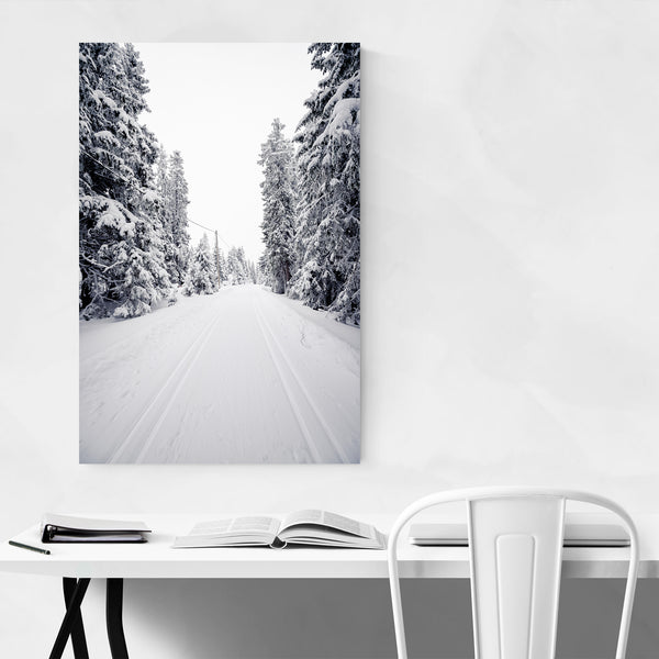 Winter Snow Norway Forest Photo Art Print