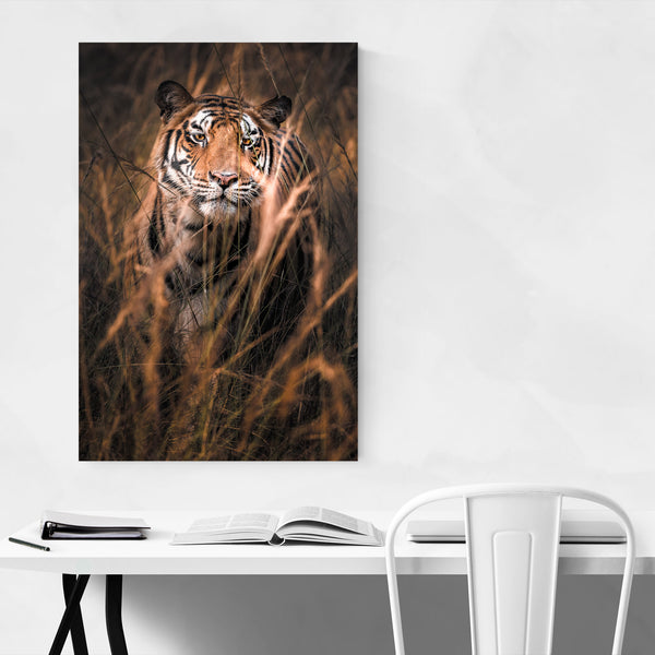 Tiger Wildlife Animal India Art Print
