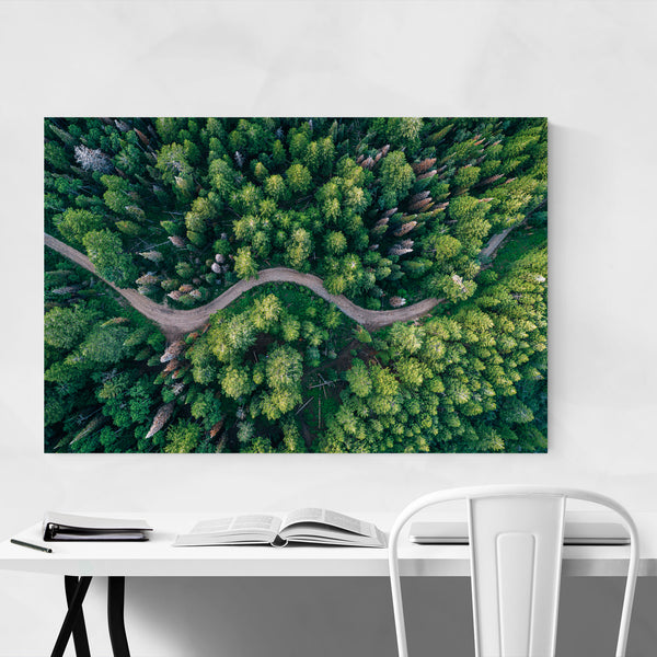 Forest Trees Nature Landscape Utah Art Print