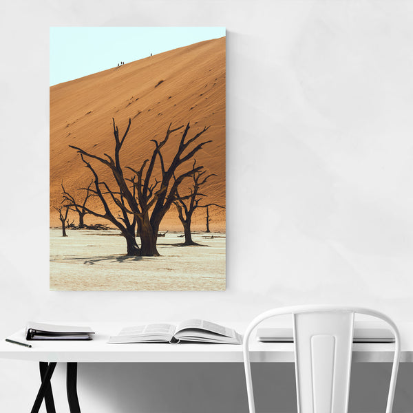 Namib Naukluft National Park Namibia Art Print