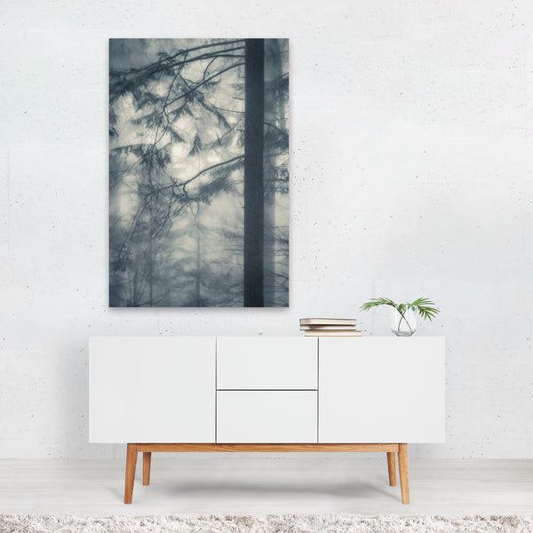 Portland Oregon Fog Forest Photo Art Print