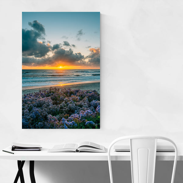 Del Mar San Diego Beach Photo Art Print