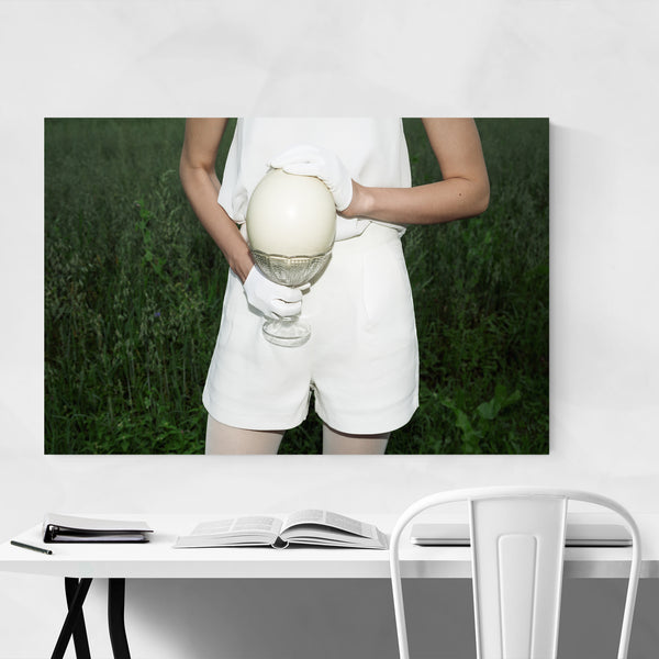Ostrich Egg Animal Science Art Print