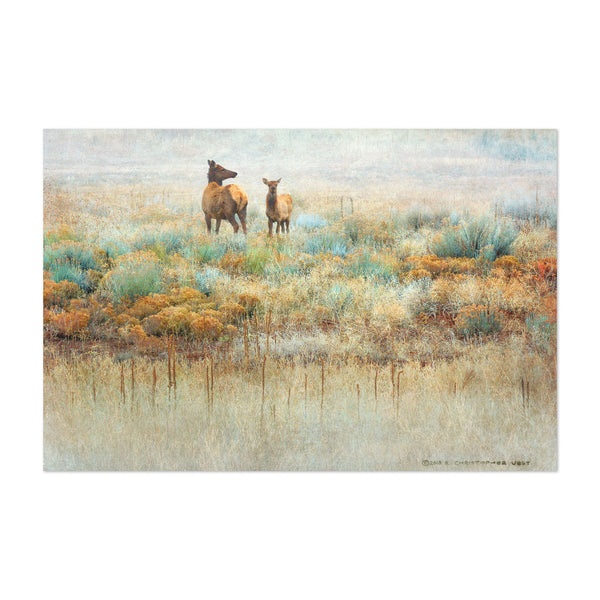 Colorado Elk Mountains Rural Photo Art Print