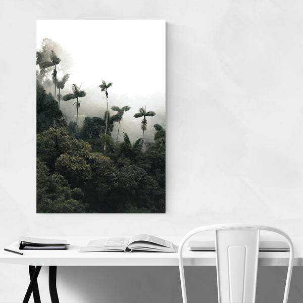 Ecuador Foggy Palm Tree Forest Art Print