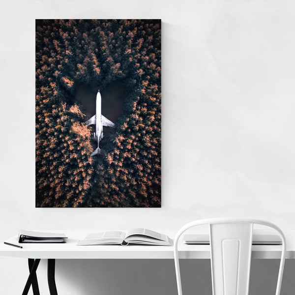 Boeing 727 Airplane House Oregon Art Print