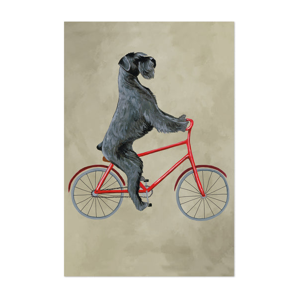 Giant Schnauzer On Bicycle Painting Art Print