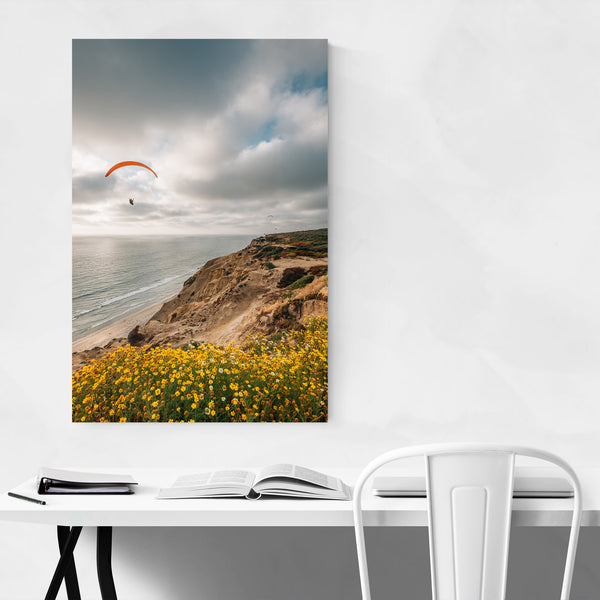 Torrey Pines San Diego Nature Art Print