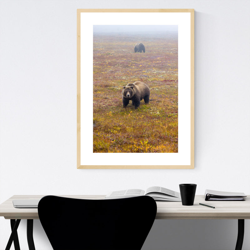 Dempster Highway Yukon Canada Framed Art Print