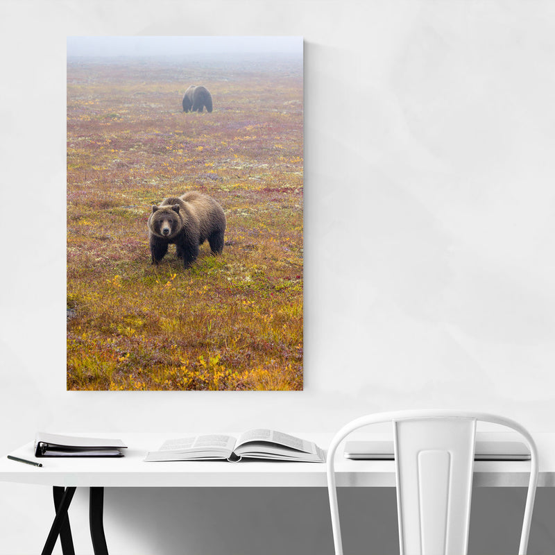 Dempster Highway Yukon Canada Canvas Art Print