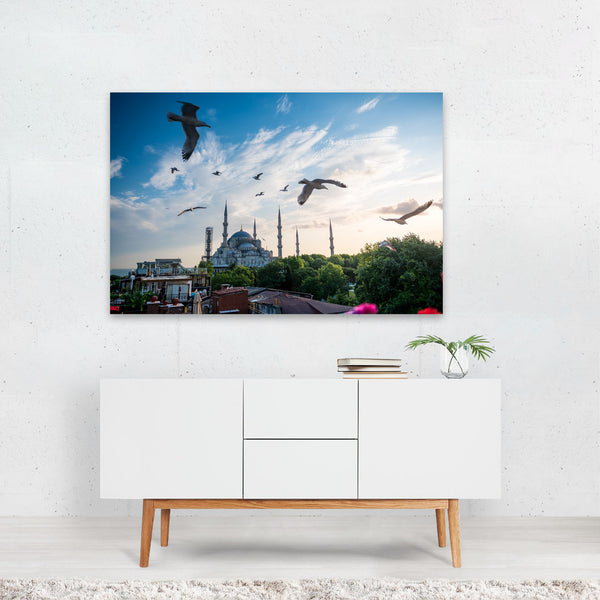 Istanbul Turkey Animal Seagull Photo Art Print