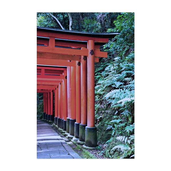 Kyoto Japan Torii Gates Photo Art Print