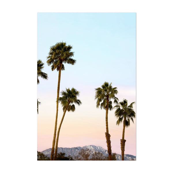 Palm Springs Trees Coastal Art Print