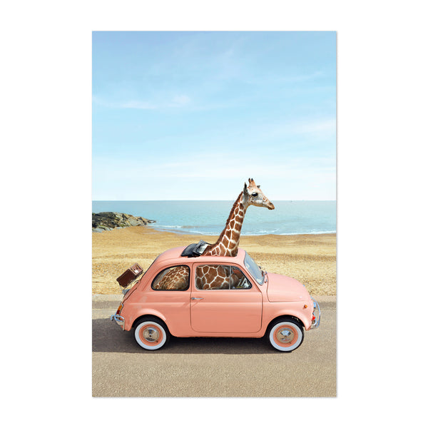 Giraffe Humor Car Fiate Beach Art Print