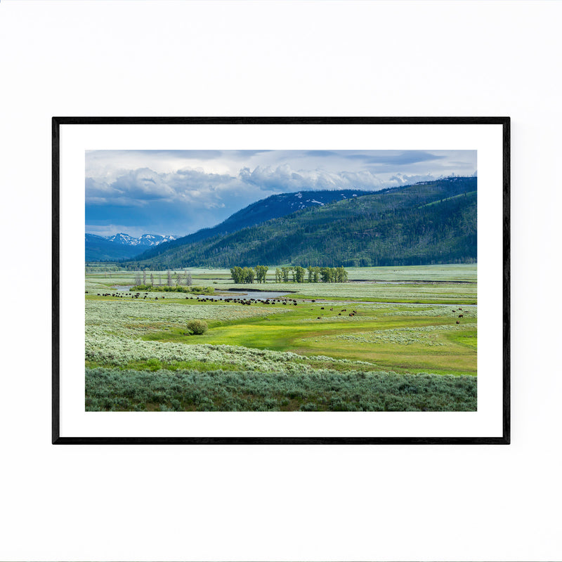 Yellowstone Lamar Valley Wyoming Framed Art Print