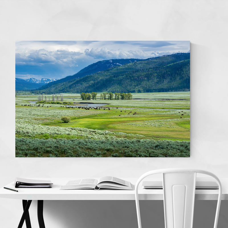 Yellowstone Lamar Valley Wyoming Canvas Art Print