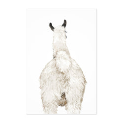 Llama Cute Peekaboo Animal Art Print