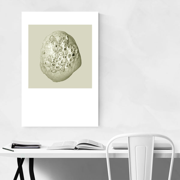 Seashell Nautical Minimal Pastel Art Print