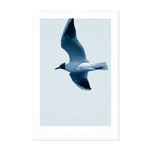 Minimal Bird Pastel Animal Nautical Art Print