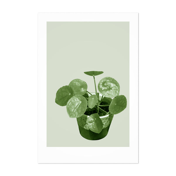 Minimal Chinese Money Plant Floral Art Print