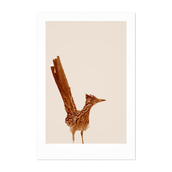Minimal Roadrunner Animal Art Print