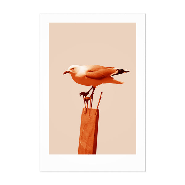 Minimal Seagull Bird Animal Nautical Art Print