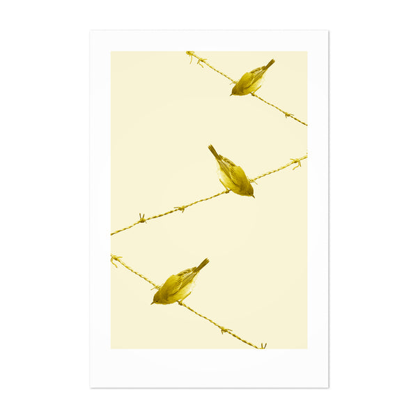 Minimal Cute Yellow Bird Animal Art Print