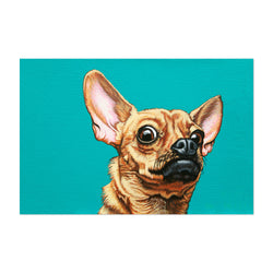 CHIHUAHUA DOGS ANIMALS MODERN WALL ART CANVAS PRINT PICTURE READY TO HANG