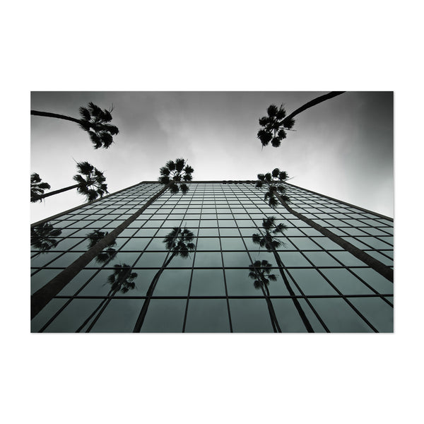 Palm Trees Modern Architecture Art Print