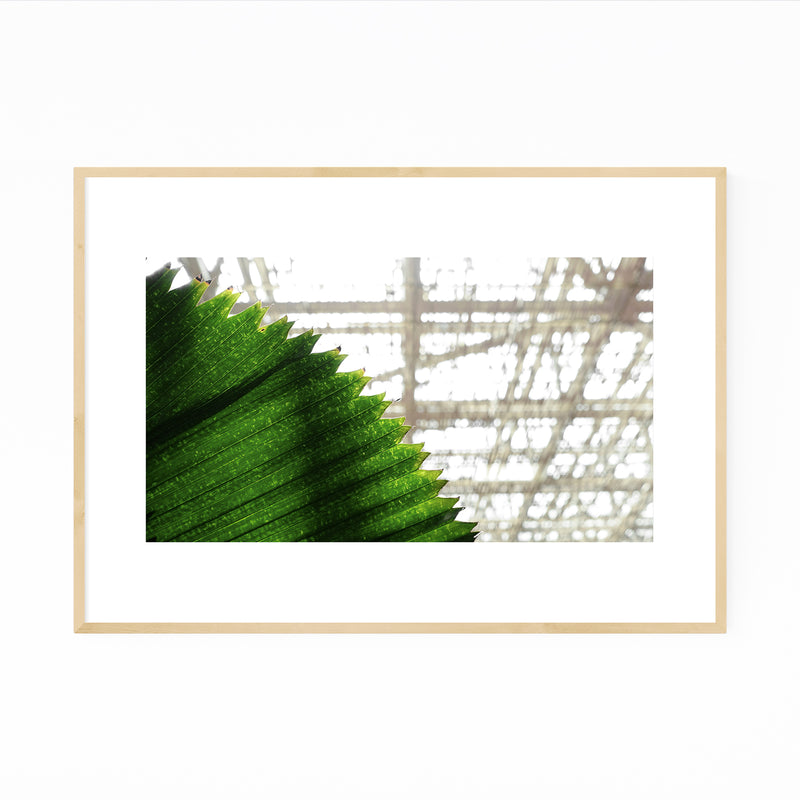 Singapore Singapore Abstract Photography Framed Art Print