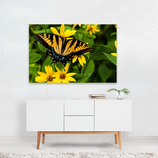 Butterfly Floral Nature Photo Art Print