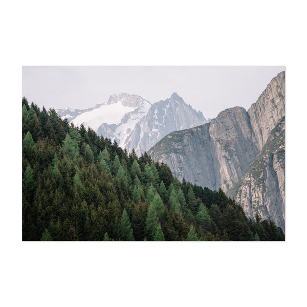 Susten Switzerland Forest Photo Art Print