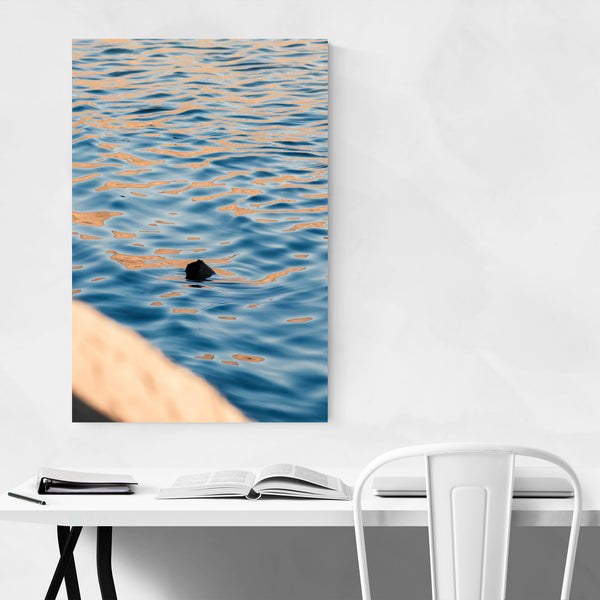 Water Reflections Swimming Lake River Art Print