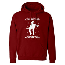 Hoodie When Those Sleigh Bells Ring (was 3109) Unisex Adult Hoodie