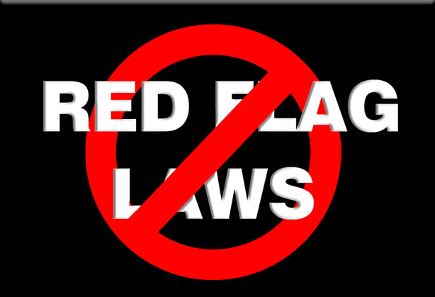 Anti-Red Flag Laws Magnet by Libertarian Country