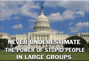 Stupid People in Large Groups Magnet by Libertarian Country