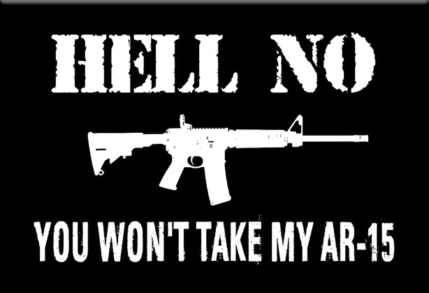 Hell No You Won't Take My AR-15 Magnet