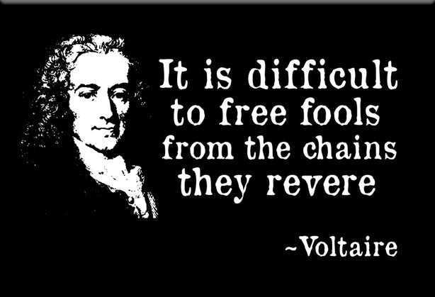 Voltaire Magnet by Libertarian Country