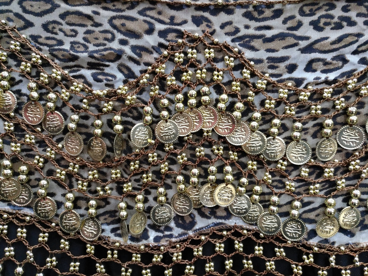 Egyptian Style Belly Dance Hip Scarf - Leopard Print Chiffon Coin Belt for Belly Dancing