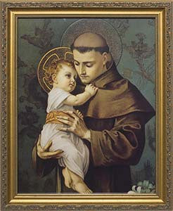 St. Anthony of Padua Picture