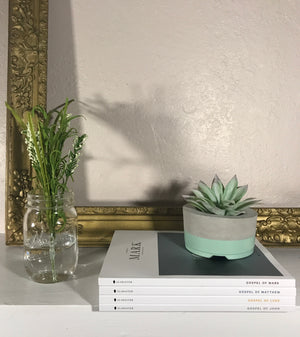 Southern Reclaim Co | Planter Medium