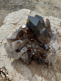 "6"" Smoky Quartz Cluster"