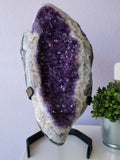 Polished Brazilian Amethyst Geode Display